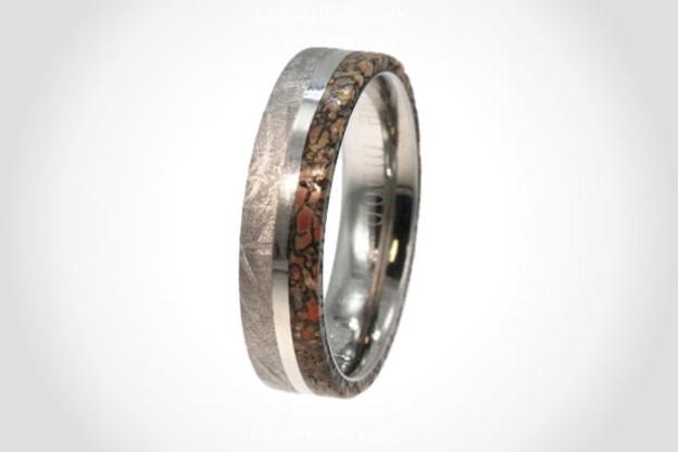 meteorite-dinosaur-bone-ring